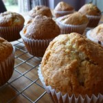 Juicy Plum Muffins