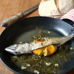 Baked Mackerel with Fennel and Lemon