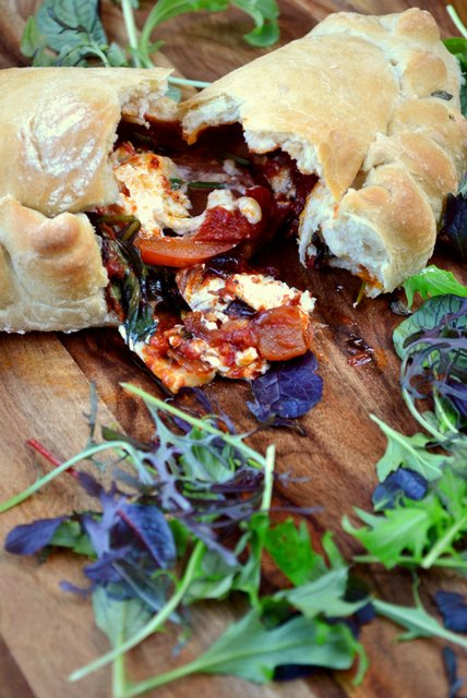 red-onion-and-goats-cheese-calzone